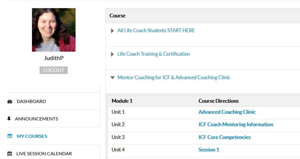 Screenshot vom Mentoring-Programm beim iNLP Center