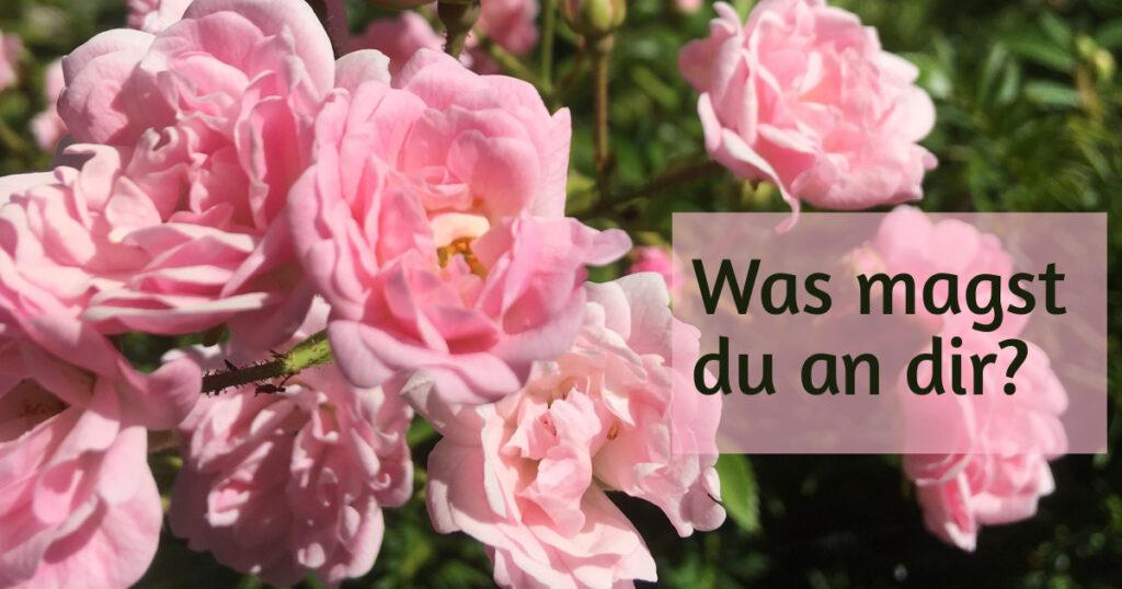 """Bild eines Rosenstrauchs mit vielen hellrosa Rosen. Text """"Was magst du an dir?"""""""