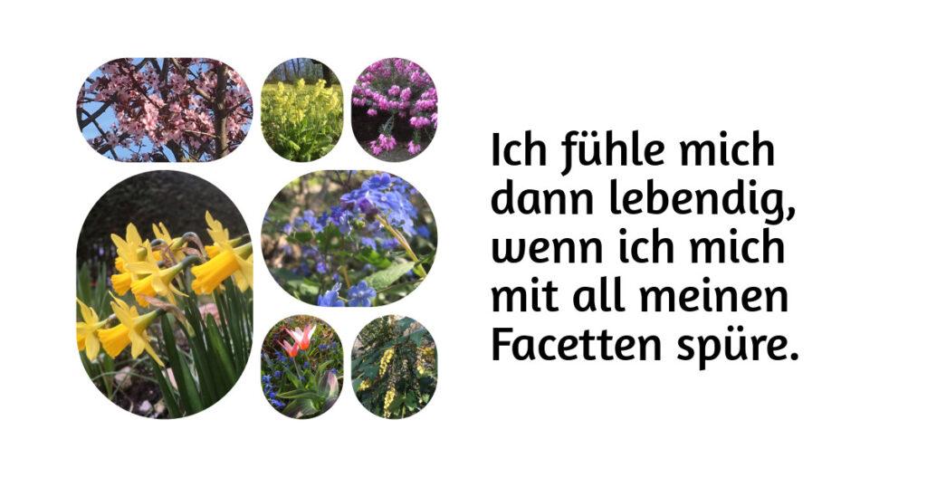 """Collage von sieben verschiedenen bunten Blumen. Text """"Ich fühle mich dann lebendig, wenn ich mich mit all meinen Facetten spüre"""""""