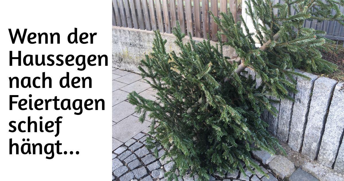 Ausgedienter Weihnachtsbaum, der an der Straße an einem Zaun lehnt. Text: Wennd er Haussegen nach