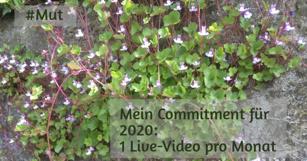 Text: #Mut Mein Commitment für 2020: 1 Live-Video pro Monat Hintergrund: zartrosa Blümchen, die aus einer Mauerritze wachsen