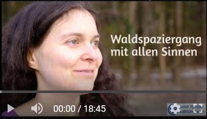 """Screenshot von Youtube - Judith mit entspanntem Gesichtsausdruck, im Hintergrund Bäume. Text """"Waldspaziergang mit allen Sinnen"""""""
